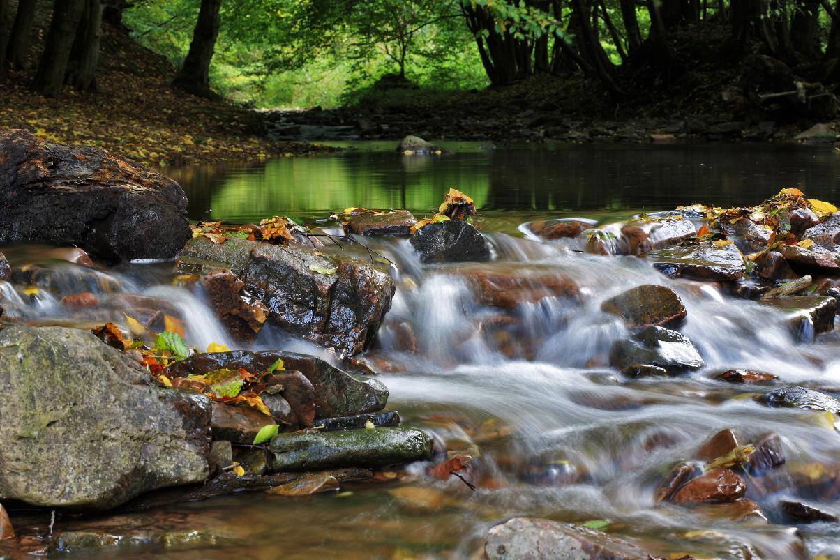 unterschied nationalpark naturpark
